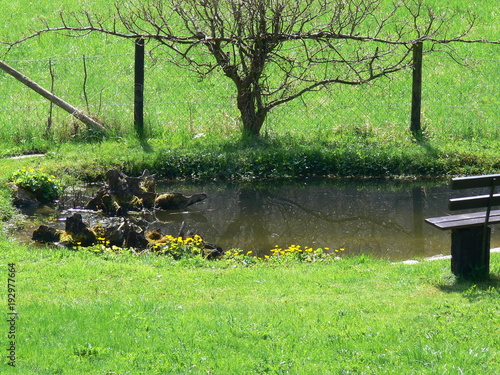 Fotobehang Lime groen Garten mit Wiese und Teich