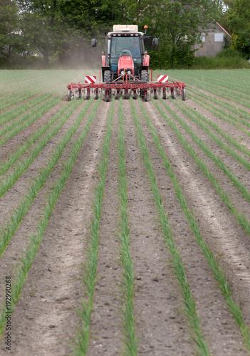 Aluminium Trekker Weed control agriculture Netherlands. Onions