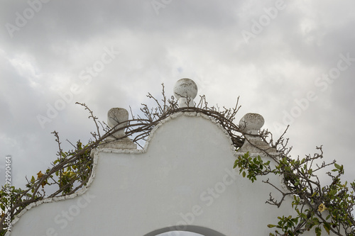Papiers peints Iles Canaries Climbing plant on walled archway Lanzarote, Canary Islands, Spain