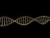 DNA strand. Isolated on black background. Vector illustration. - 192998675