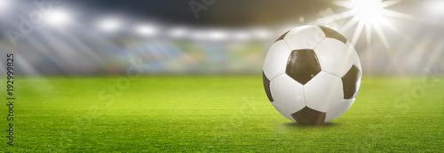 Leinwandbild Motiv Fußball im Stadion