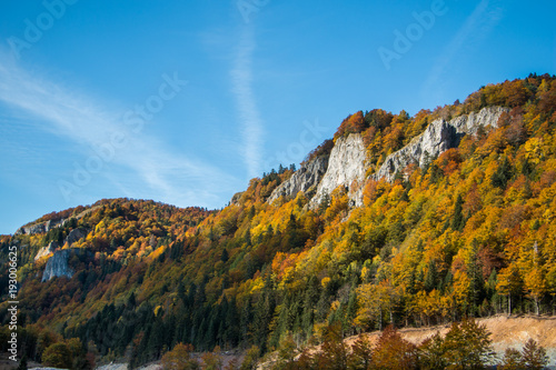 Fotobehang Blauw Mountain peaks and trees colored with autumn colors. Forest in autumn colors