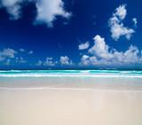 sand of beach - 193012039