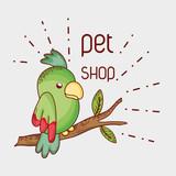 Parrot on tree branch pet shop - 193012043