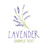 Lavender flower. Logo design. Text hand drawn. - 193018249