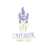 Lavender flower. Logo design. Text hand drawn. - 193018274