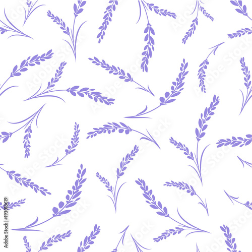 Seamless lavender flowers pattern on white background. - 193018619