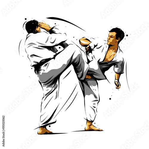 karate-action-7