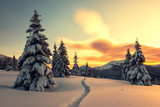 Fantastic orange winter landscape in snowy mountains glowing by sunlight. Dramatic wintry scene with snowy trees. Christmas holiday concept. Carpathians mountain - 193023873