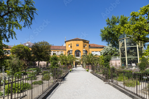 Foto Murales Botanical garden in Padua, the oldest in the world. Italy