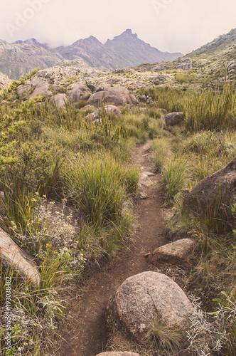 Couto Mountains Path - Parque Nacional de Itatiaia - Brazil