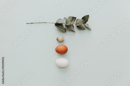 Flat lay minimal composition with eggs on pastel background © victoria