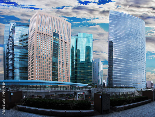 Aluminium Tokio Flowers and skyscapers in downtown TOKYO
