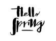canvas print picture - Hand drawn Hello Spring lettering typography poster. Celebration quotation for postcard, icon, card, logo, badge, invitation, poster, banner template lettering typography. Seasons Greetings.