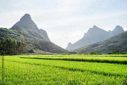 Foto op Canvas Lime groen Scenic landscape at Yangshuo County of Guilin, China