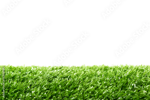 Green lawn for living