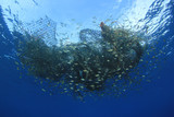 Ghost net. Abandoned fishing net pollution of ocean environment  - 193101691