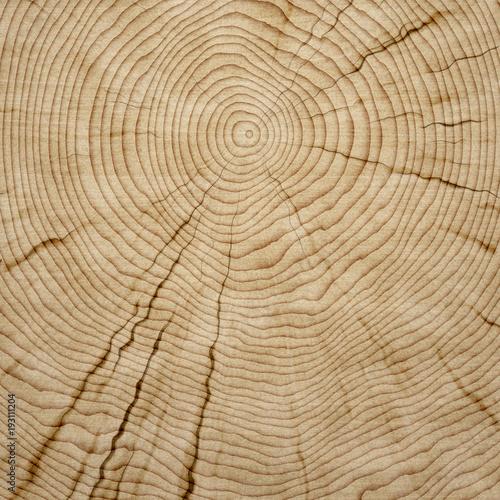 wooden background texture - 193111204