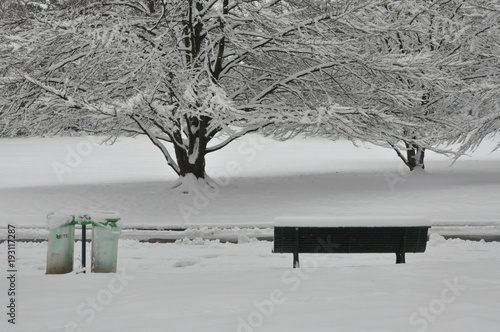 Staande foto Parijs Snow falls over Paris