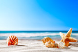 Summer beach and shells with blurred blue sea and sky  - 193123696