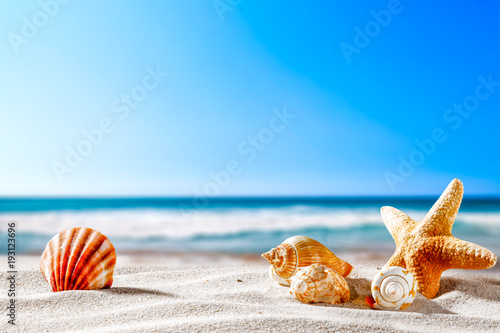 Fotobehang Tropical strand Summer beach and shells with blurred blue sea and sky