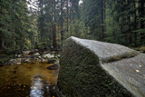 Brook or creek in nature pine Scandinavian mountain forest in evening light. Huge wet cold rock stones covered with northern moss. Nordic spruce tree forest background. Travel concept. Portrate view.