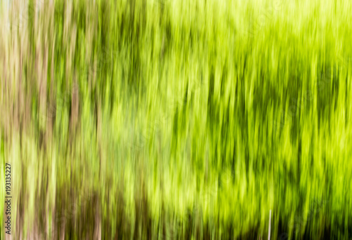 Deurstickers Lime groen Wall from water falls on nature as background