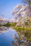 Hikone Castle Moat - 193146664