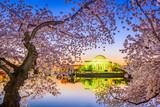 Washington DC in Spring - 193146684