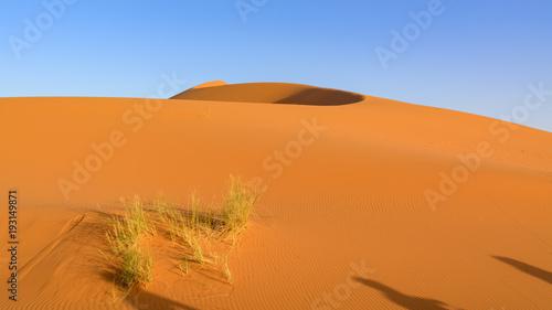 Staande foto Oranje eclat Erg Chebi dunes - Sahara. Merzouga. Morocco
