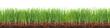 Wiese,Rasen,Gras mit Erde im Querschnitt