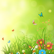 Spring or summer background with green grass, flowers and butterflies