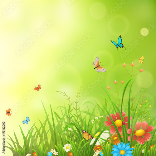 Fototapeta Spring or summer background with green grass, flowers and butterflies
