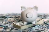 Piggy moneybox with dollar cash closeup. Financial concept - 193166880