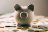 Piggy moneybox with euro cash and coins closeup. Financial concept - 193167071