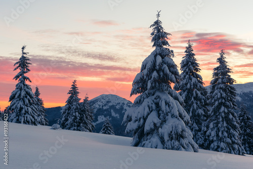 Plexiglas Winter Fantastic orange winter landscape in snowy mountains glowing by sunlight. Dramatic wintry scene with snowy trees. Christmas holiday concept. Carpathians mountain
