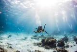 Scuba diving on coral reef underwater with rays light background. - 193172661
