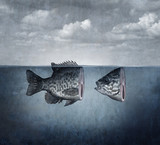 Surreal Fish Art