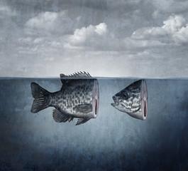 Surreal Fish Art