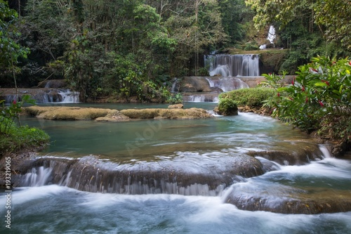 Scenic waterfalls and lush vegetation in Jamaica - 193219065