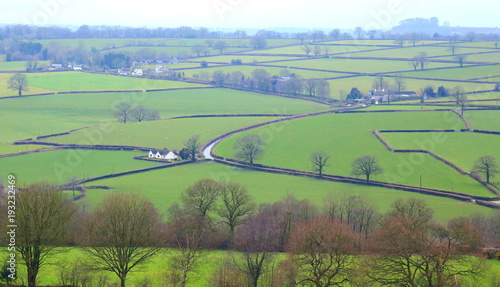 Foto op Canvas Olijf Farmland in The Blackdown Hill Area of Outstanding Natural Beauty