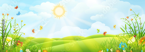 Summer or spring sunny meadow with green grass and flowers - 193234228