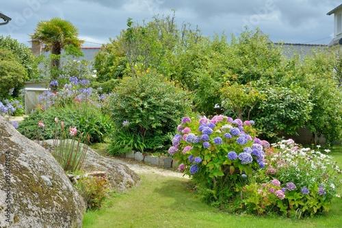 Plexiglas Hydrangea Hortensias de Bretagne