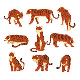 Powerful tiger in different actions set of cartoon vector Illustrations on a white background