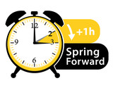 Summer Time Daylight Saving Time Spring Forward Alarm Clock  Icon Ii Wall Sticker