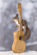 red squirrel touching the strings of an guitar