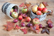 Maple leafs, apples, pears and other gifts of nature. Autumn still life.