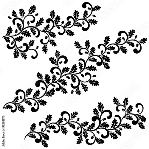 Decorative swirling oak branches with leaves and acorns isolated on white background. Ideal for stencil. Vintage style.