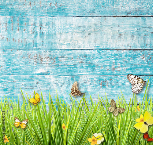 Foto op Canvas Vlinders in Grunge Idyllic spring meadow with butterflies with old wooden planks on background.