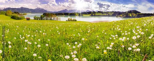 Foto op Plexiglas Panoramafoto s Panorama Landschaft in Bayern im Allgäu mit Forggensee und Berge